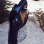 BLACKBIRD - Belgian marble