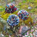 KÄPY - Finnish pine cones